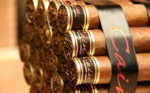 pravla hraneniya sigar